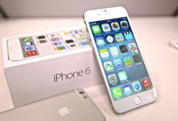 IPhone 6: Color. Los colores del nuevo iPhone 6: Revisión, comentarios