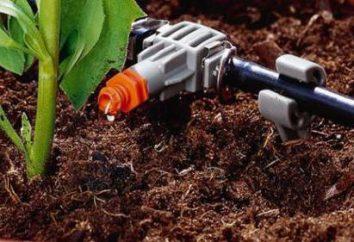 sistemi di irrigazione a goccia automatici: Descrizione e recensioni