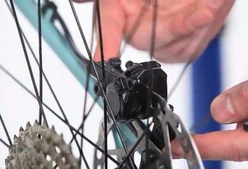 Impostazione dei freni a disco su una bicicletta: caratteristiche del procedimento