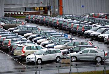 Qual è il costo di cancellare dalla macchina? Come lo sdoganamento delle auto in Russia
