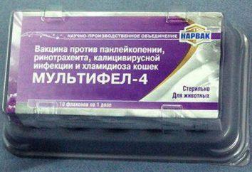 """Le vaccin """"Multifel-4"""": l'instruction (pour les chats)"""
