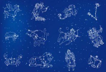 Znak – co to jest? Ile znaków zodiaku tam? Wężownika – nowa postać?