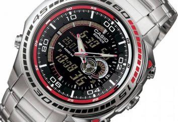 Avantages et caractéristiques des montres Casio
