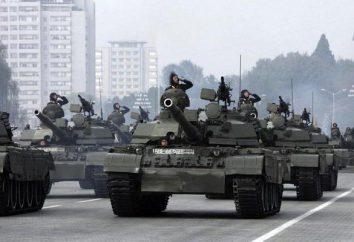 Le forze armate della Corea del Nord e Corea del Sud: un confronto. Composizione, dimensioni, armamento Corea del Nord esercito