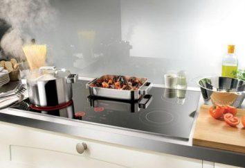 tables de cuisson électriques: avis. tables de cuisson électriques en verre-céramique: avis