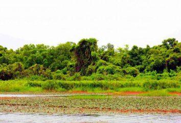 Tripudio di colori Burkina Faso: Eagle – Parco Nazionale