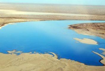 Lago Eyre in Australia
