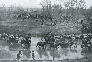 Batalha de Mukden: forças das partes, história