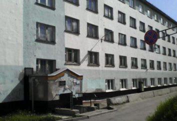 L'ospedale psichiatrico regionale (Murmansk) – Storia e presente