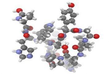 hormona peptídica regulador LH correcto funcionamiento de las gónadas, así como participante en la progesterona y la testosterona