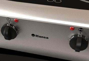 Stufa elettrica con forno: una panoramica, tipi, caratteristiche e recensioni. Elettrico 4 hkonforochnaya con forno