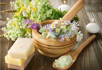 cosméticos naturais com ervas: os segredos da natureza para saúde e beleza