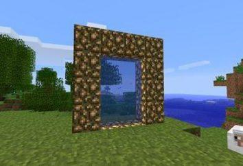 """Como construir na porta de entrada """"Maynkraft"""" para o paraíso?"""