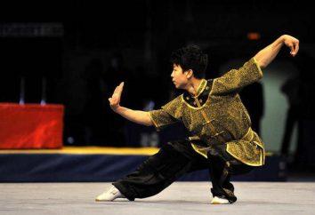 Wushu taolu – Chińskie gimnastyka