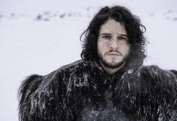 Dzhon Snou (Jon Snow): Realtà e ipotesi