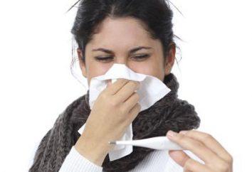 Die Grippeimpfung: Gegenanzeigen. Muss ich eine Grippeschutzimpfung brauchen?
