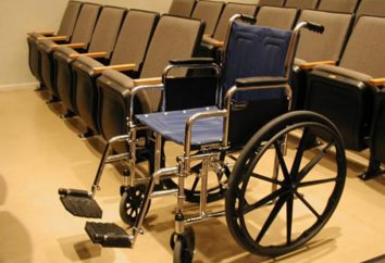 Perché il sogno di una sedia a rotelle? Sogno libro vi aiuterà a trovare la risposta a questa domanda!
