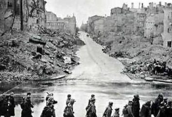 La défense héroïque de Kiev (1941), brièvement