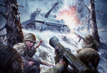 Call of Duty (tutte le parti). Un elenco e una breve descrizione