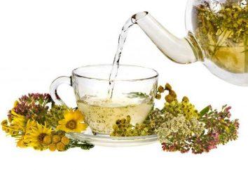 Bester Kräutertee: Rezepte. Zu Hause, wie Heilung Tee bereiten