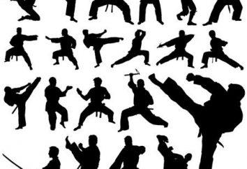 sztuk walki. Martial Arts: Rodzaje
