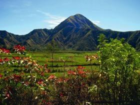 Férias em Bali: comentários de viajantes