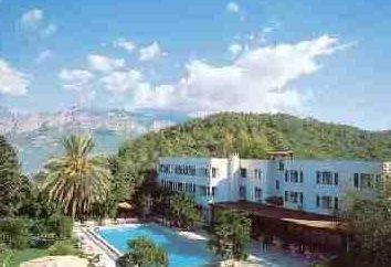Korient hotel 3. Descrição, comentários