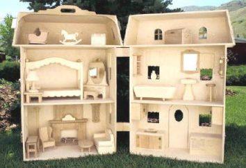 Como fazer uma casa para Barbie próprias mãos