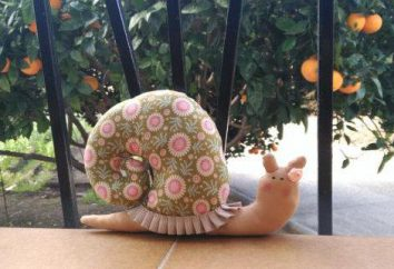 patrones populares caracoles tilde