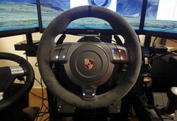 kierownica gra FANATEC Porsche 911 GT2: opis i opinie