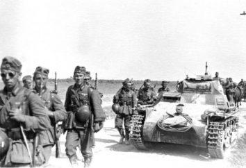 Fucile della seconda guerra mondiale. Armi leggere. Trehlineyka Mosin