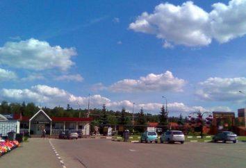 Più recente cimitero di San Perepechinskoe a Mosca