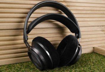 Duże słuchawki: plusy i minusy, najlepszy model