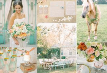 Wedding Peach: reglas de dibujo y foto