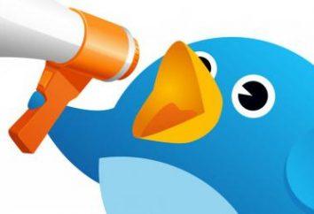 """Cómo agregar videos en el """"Twitter"""" en su cuenta"""