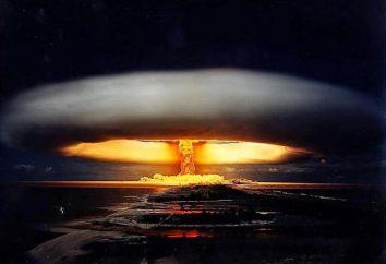 4 settembre – uno specialista in materia di sicurezza nucleare, la Russia Giorno