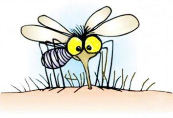 Comment choisir un remède populaire efficace contre les poux et les moustiques