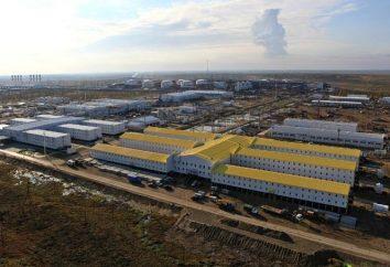 campo Vankor: un impulso allo sviluppo della Siberia