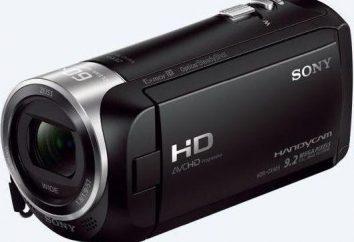 Sony HDR-CX405: spécifications et avis