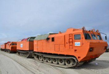 """DT-30 """"Vityaz"""" – veículo todo-terreno de duas ligações em pistas de lagarta: descrição, características técnicas e avaliações"""