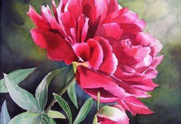 Uczenie malowania: kolory w obrazie będzie dużo!