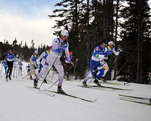 Was sollte die Länge der Skier sein? Langlaufski. Die Länge des Alpinski