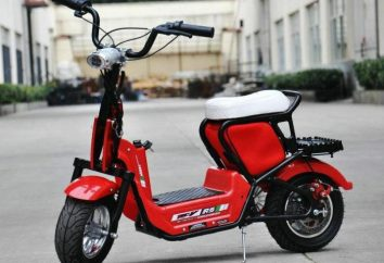 Mini-skuter: lekki, szybki i domowy