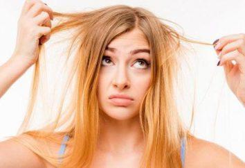 Plazmoterapiya capelli – un metodo moderno di trattamento di perdita di capelli. Descrizione della procedura, i commenti