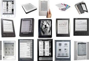 Livros eletrônicos com tinta eletrônica – bibliotecas pessoais que estão sempre com você