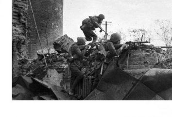 Bitwa pod Stalingradem. Uczestnicy bitwy: lista historii i ciekawych faktów