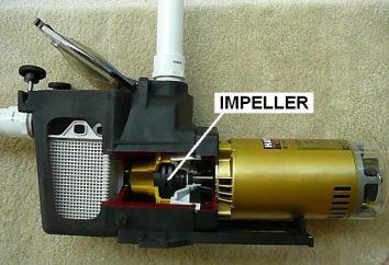 girante della pompa: dispositivo. girante della pompa con le proprie mani