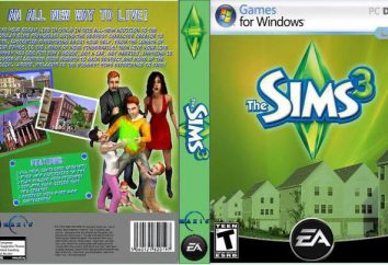 """Cosa fare se il """"The Sims 3"""" si blocca nel gioco?"""