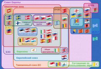 Spazio economico europeo: formazione, partecipanti e relazioni con la Comunità economica eurasiatica