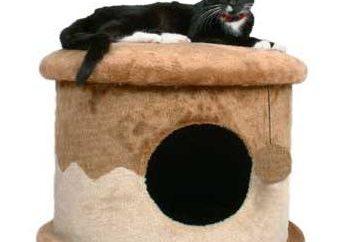 Come fare una casa per il gattino con le proprie mani? Veloce, economico, elegante!